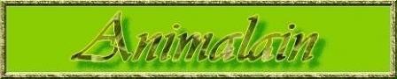 Logo Animalain